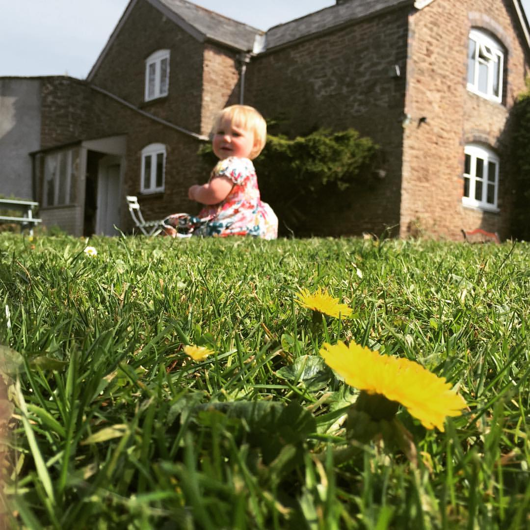 10 reasons to get children involved in gardening