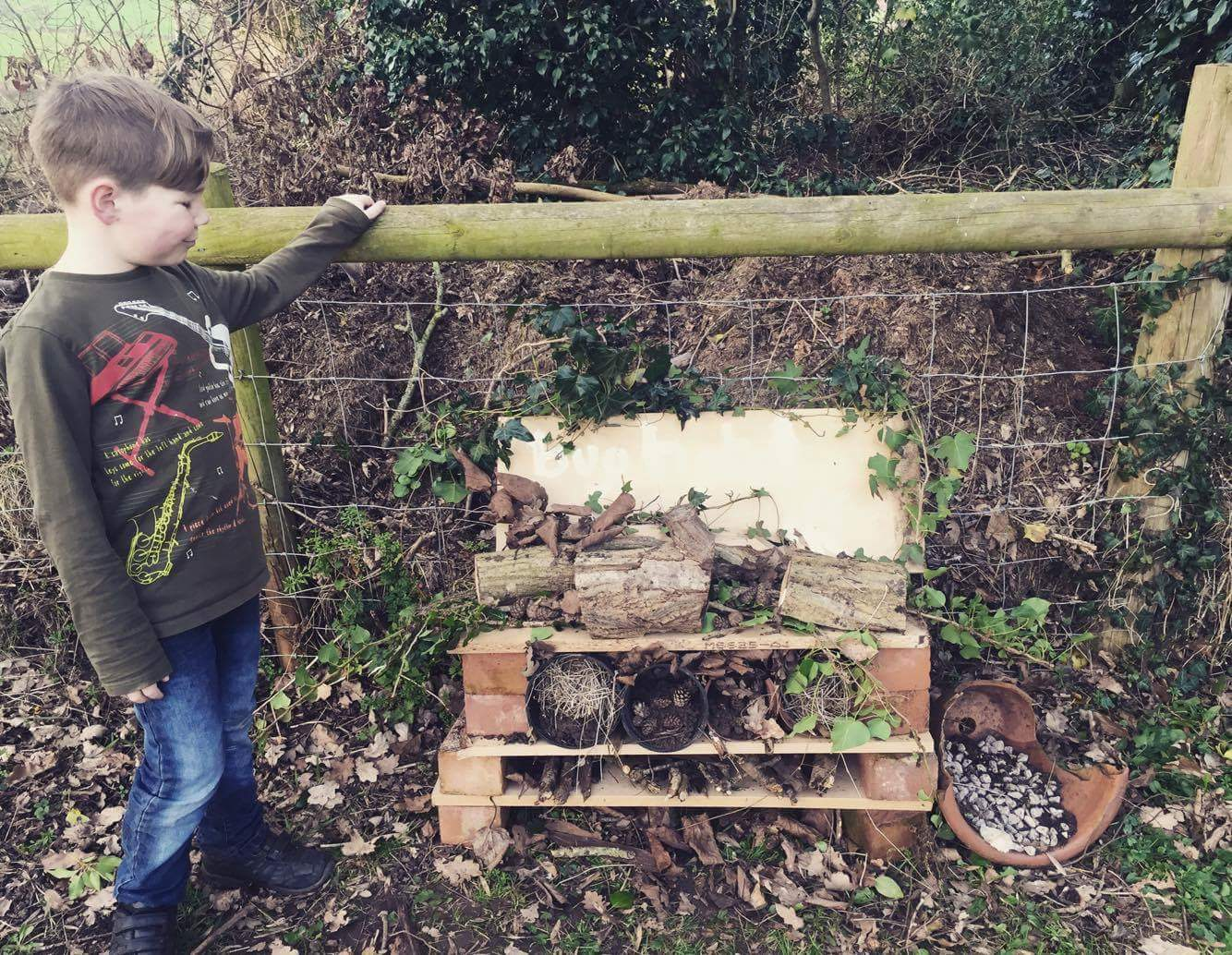 Bug Hotel open for business