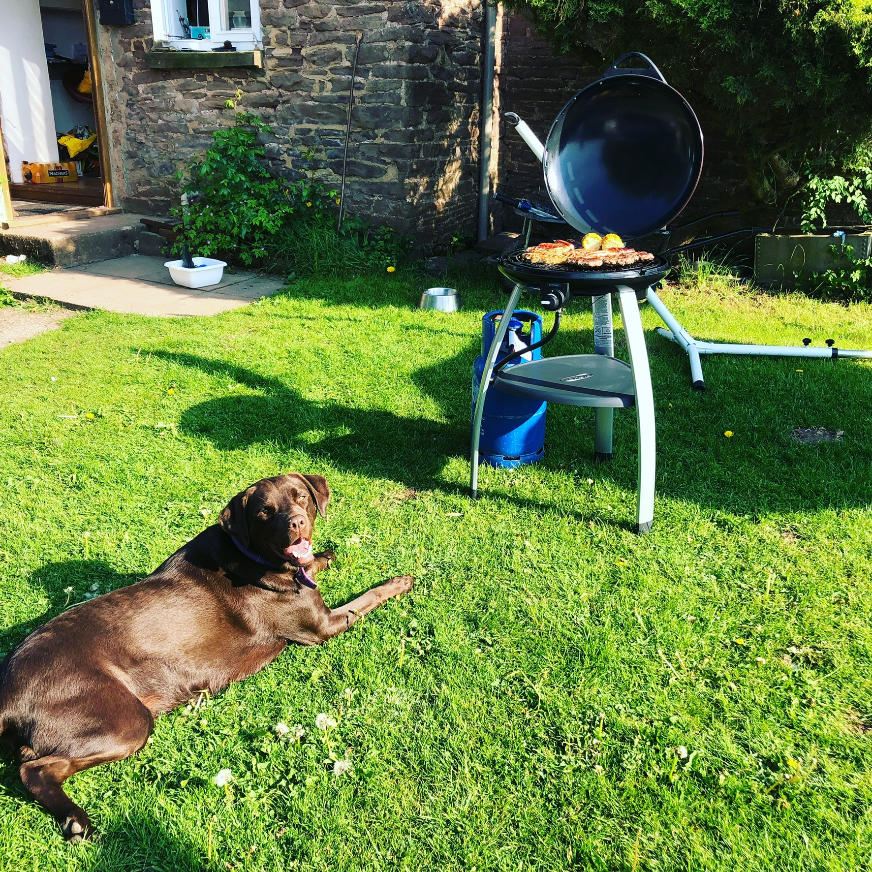 Trekker BBQ – review and giveaway