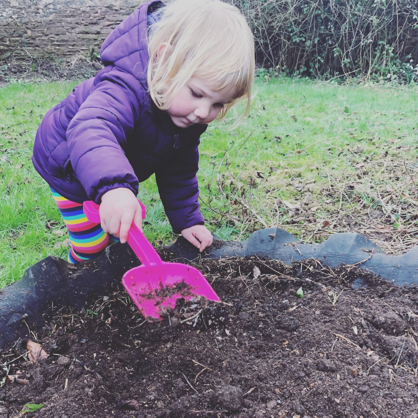 Planting seeds this winter